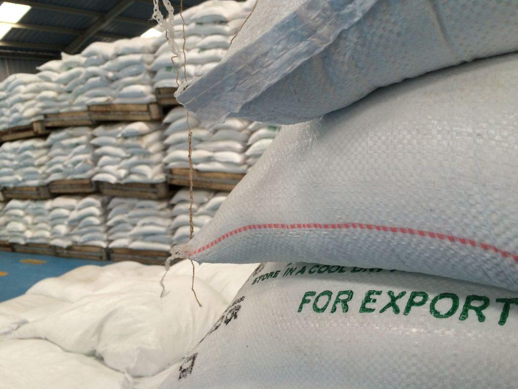 Salt stacks for export